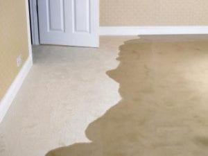wet-carpet